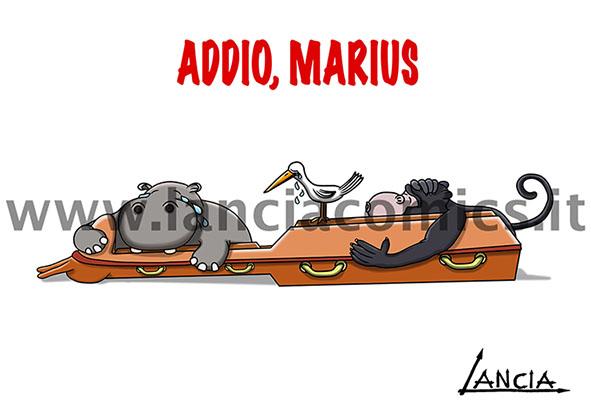 Addio Marius
