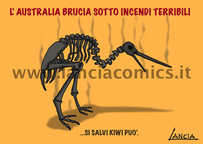 Kiwi arrosto